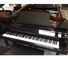 Cristofori CRG410L Player (SOLD)